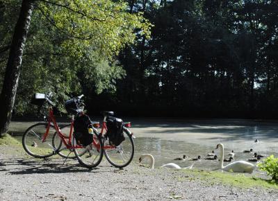 אופניים עומדות ליד נהר באגמי מינכן