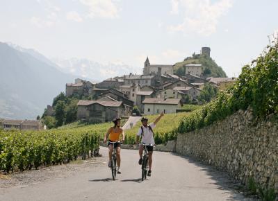 רוכבי אופניים בדרך היין בשוויץ