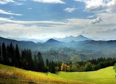 נוף מהמסלול לאורך הריין וביער השחור