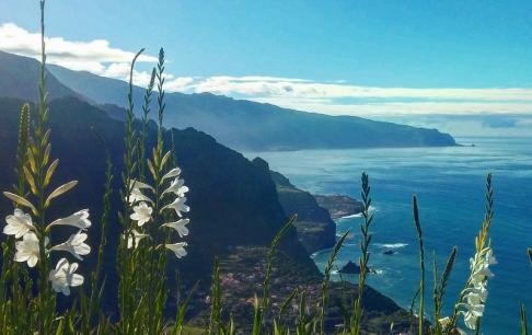 הנוף מצוקי האי מדיירה