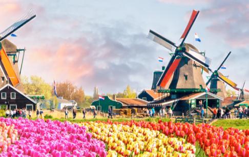 טיול אופניים ושייט במיטב  הולנד