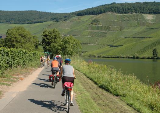 רוכבי אופניים לצד המוזל