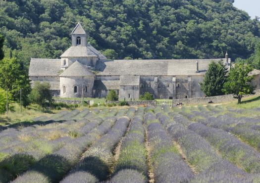 מנזר סננקווה בפרובאנס