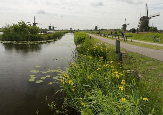 שביל אופניים לאורך הנהר