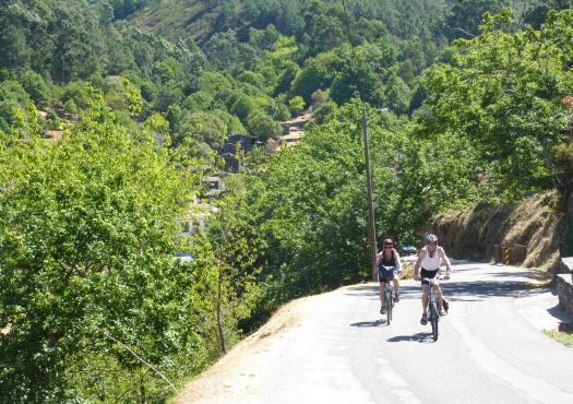 רוכבי אופניים בליבה הירוק של פורטוגל