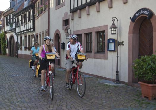 על האופניים באלזס, משטרסבורג למיינץ 2