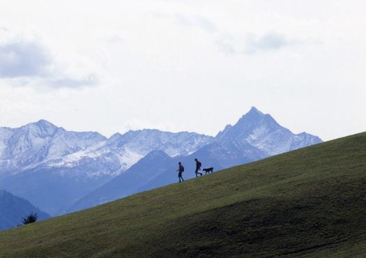 הליכה במסלול בין ההרים השוויצרים