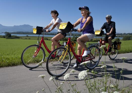 רוכבי אופניים במסלול פרובאנס וקמארג