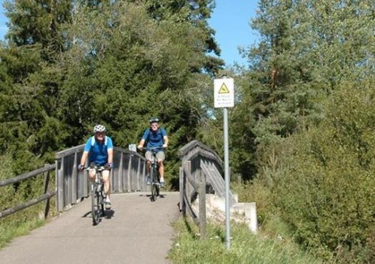 רוכבי אופניים לאורך הריין