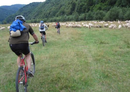 רכיבת אופניים באחו ברומניה