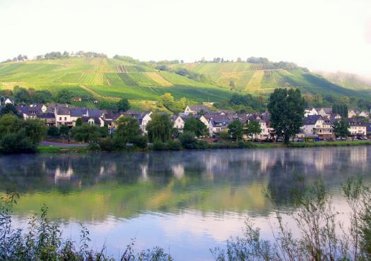 נהר המוזל. על נתיב היין