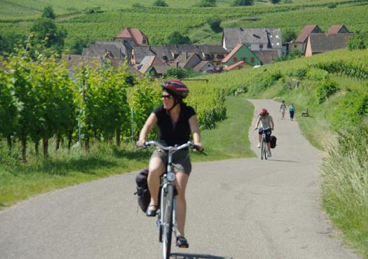 רכיבת אופניים בחבל אלזס בצרפת, תמונה מטיול