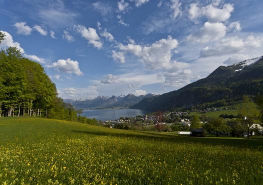 תמונה פנורמית לעבר אגם Wolfgangsee