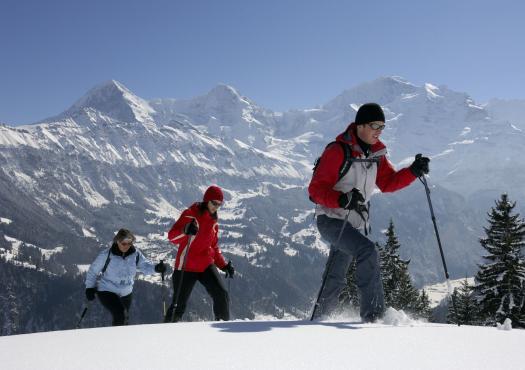 מטיילים צועדים בשלג
