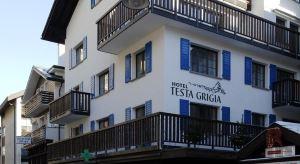 testa_grigia_front.jpg